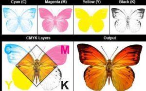 Hệ màu nên dùng trong in ấn